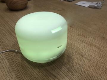 Aiho Duftzerstäuber 500 ml in hellgrün